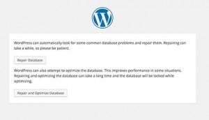 تنظیمات پایگاه داده در قالب ورد پرس