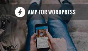راه اندازی گوگل AMP در وردپرس