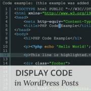 نمایش کد در سایت وردپرس