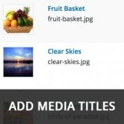 اضافه کردن عنوان رسانه در وردپرس