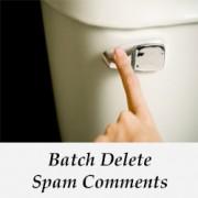 حذف دسته spam در نظرات وردپرس