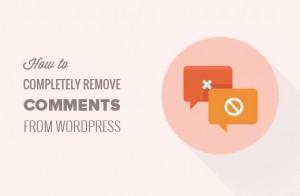 حذف نظرات از سایت با طراحی قالب وردپرس
