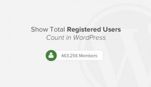 نمایش تعداد کل کاربران ثبت نام شده درسایت با طراحی قالب وردپرس