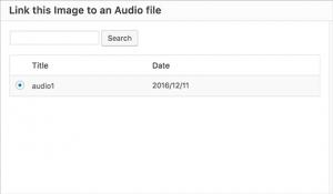 نصب پلاگین Audio Story Images در وردپرس