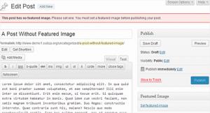 پلاگینعکس های ویژه برای پست ها در وردپرس