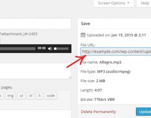 تنظیمات پلاگین اضافه کردن ویجت پخش کننده موسیقی در وردپرس