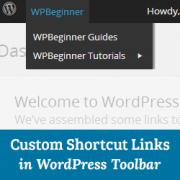 اضافه کردن لینک های سفارشی میانبر برای وردپرس در نوار ابزار
