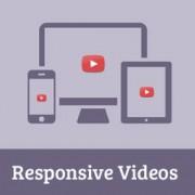 ساخت ویدئو در وردپرس با FitVids