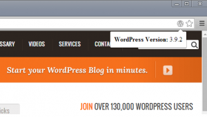 ضمیمه WordPress Version Check
