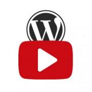 بهترین پلاگین های وردپرس برای ناشران یوتیوب