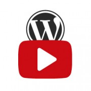 YouTube در وردپرس