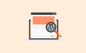 چگونه بفهمیم چه تمی برای یک سایت در وردپرس مناسب است